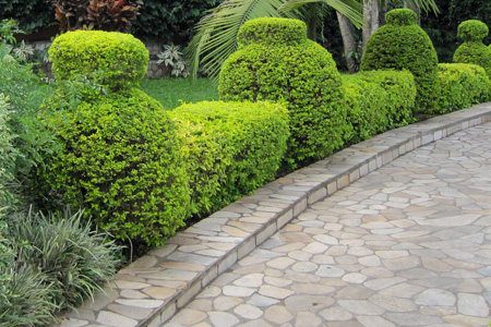 Paved Garden Walkway