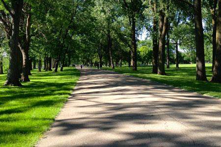Park Paving